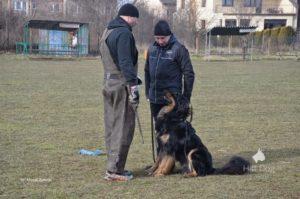 Trening IPO z Jackiem Lewkowiczem
